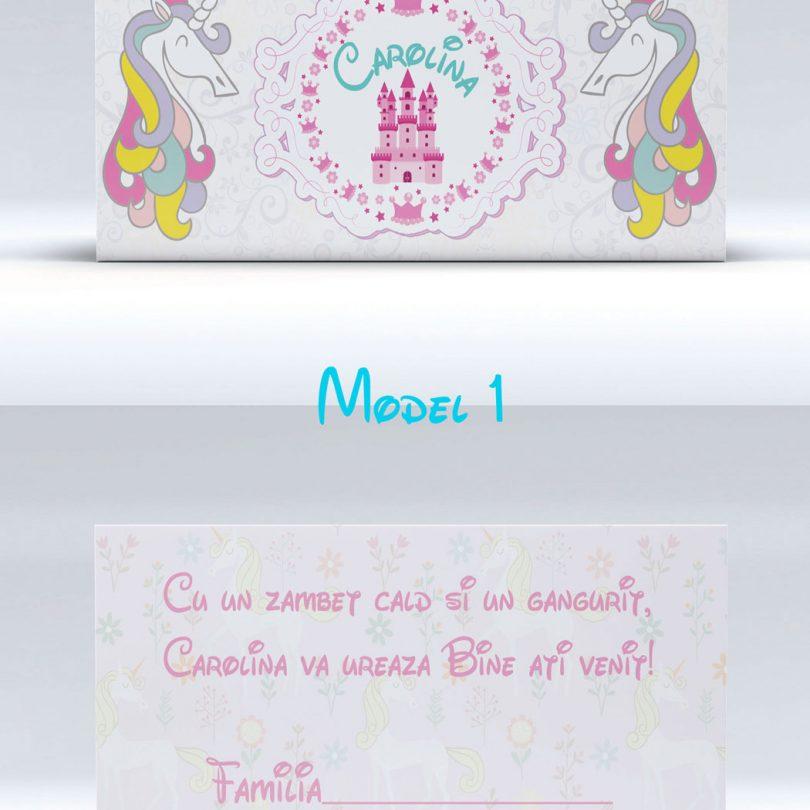 plicuri pentru bani cu unicorni