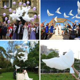Baloane în formă de porumbei, perfecte pentru o petrecere de neuitat. Alege pentru nunta ta baloane moderne, potrivite pentru orice tematică.