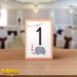 Număr de masă Elefănţel